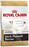 Royal Canin Jack Russel Junior 500 g, 5er Pack (5 x 500 g)
