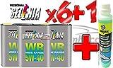 Olio Motore Selenia WR 5W40 DIESEL Originale FIAT ALFA ROMEO LANCIA +1 x BARDAHL Windscreen Cleaner Concentrated Liquido Lavavetri Concentrato Antigelo -20°C a 70°C Pulisce e Sgrassa 250 ML