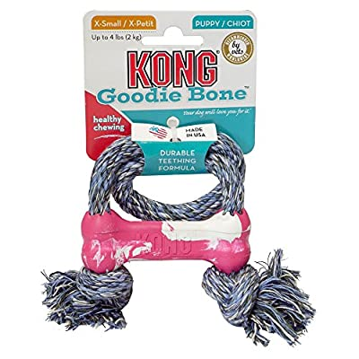 KONG Puppy Goodie Bone, Small, Assorted _P1