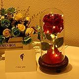 """""""La Bella y la Bestia Rosa"""", Rosa Encantada, Flor Artificial Rosa de Seda Roja con Luz LED en Cúpula de Cristal"""