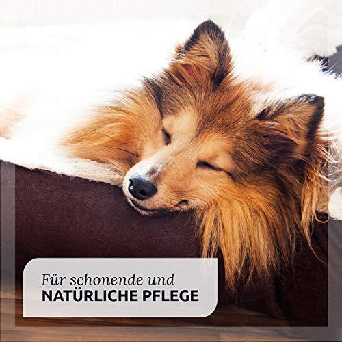 AniForte Ohrmilbenöl 50 ml bei Ohrmilben- Naturprodukt für Hunde, Katzen und andere Haustiere - 3