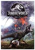 Jurassic World: Fallen Kingdom [DVD] (English audio. English subtitles)