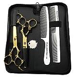 HEMATITE Ciseaux de coiffure professionnels en acier 440C 17.5 cm