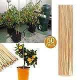 50tuteurs de jardin en bambou, tuteur en bois pour la croissance des plantes, fleurs de jardin - décoration d'intérieur et d'extérieur...