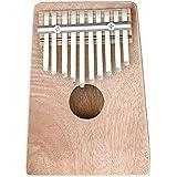 Neewer Piano de pulgar de 10 teclas abedul Mbira, 17x12.8x2.9 portátil centímetros / 6.7 x 5.0x1.1 pulgadas, educación juguete instrumento Musical para el amante de la música (negro)