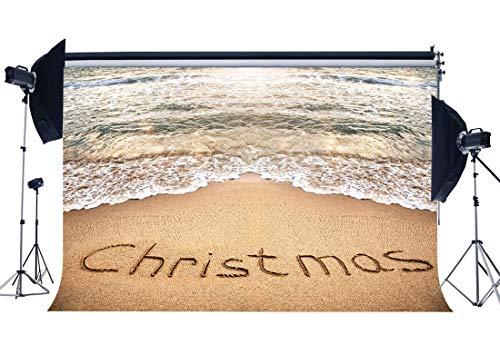 ergrund 10X8FT Vinyl Seaside Sand Strandhintergründe Tropischer Ozean Hawaiian Luau Fotografie Hintergrund Kinder Erwachsene Weihnachten Urlaub Gruß Frohes Neues Jahr YX862 ()