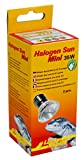 Lucky Reptile HSM-35 Halogen Sun Mini 35 W Doppelpackung