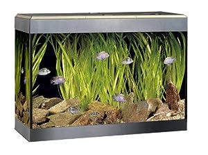 Fluval Roma 90 Designer Aquarium Set (Fluval U2 Internal Filter)