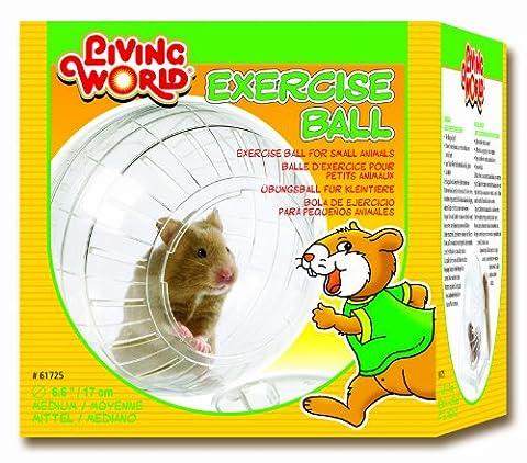 Hamster Russe - Living World Boule d'exercice pour Hamster Diamètre