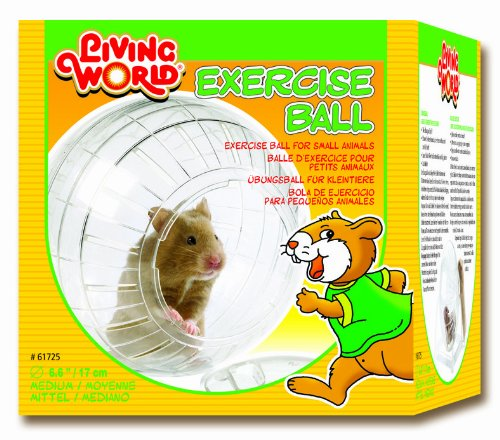 Living World Exercise Ball for Hamsters Test