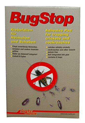 Lucky Reptile BS-1 Bug Stop, Heimchen Klebefalle