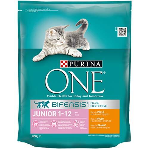 ONE Purina Bifensis Crocchette Gatto Junior 1-12 Mesi Ricco in Pollo e Cereali Integrali - 8 Sacchi da 800 g Ciascuno