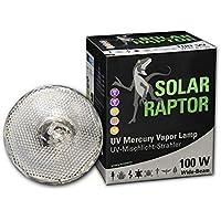Econ Lux SolarRaptor 100W MVL PAR38