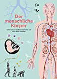 Der menschliche Körper: Geheimnisse und Besonderheiten auf einen Blick verstehen