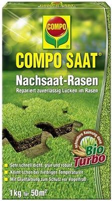 Compo Semillas Después de semillas de césped, 1kg
