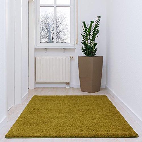 shaggy-tapis-godiva-vert-clair-41-dimensions-140-x-200-cm