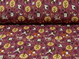 Swafing Nano Softshell Programm Sheldon, Waldtiere, Beere (25cm x 140cm)