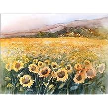 Cuadro sobre lienzo 40 x 30 cm: Sunflower field in the Luberon, Provence de Eckard Funck - cuadro terminado, cuadro sobre bastidor, lámina terminada sobre lienzo auténtico, impresión en lienzo