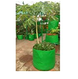 #6: Evergreen Terrace Gardening Grow Bag Very Big Size For Fruits, Banana, Etc 24