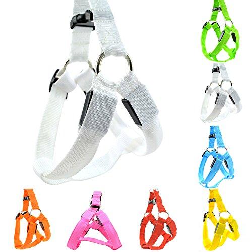Wasserdicht-LED-Haustier-Hundegeschirr-LED-USB-aufladbare-Haustier-Sicherheits-Kragen-Sicherheitsgeschirr-Brustgechirr-Mit-LED-Licht