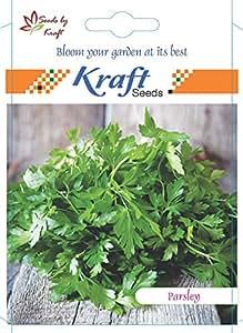 Parsley Vegetable Seeds (Pack of 5) by Kraft Seeds