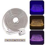 Striscia LED XUNATA AC 220 V 230 V SMD 5730 IP65 impermeabile, bianco caldo + blu 120 LEDs/m flessibile striscia di luce tubo per cucina Stairway Home Natale Party Deko, 10m