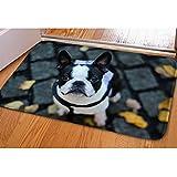 abbracci idea cute Pet morbida flanella Welcome zerbino entrata way tappetino moderno Boston Terrier