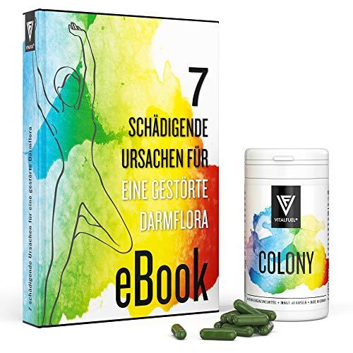 Vitalfuel - Colon - 60 Stück - für mehr Wohlbefinden - mit vielen Kräutern & Gewürzen - vegan