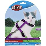 Trixie 4182 - Petral y tirador gatitos, 19–31 cm/8 mm, 1,20 m, surtido: colores aleatorios