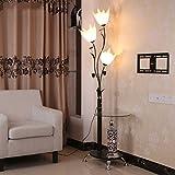 Floor Stand Lights - Einfache Mode Eisen Acryl Stehleuchte Kreative Glas Couchtisch Dekorative Lichter Schwarz, 172x46cm - Design Fixture Lighting