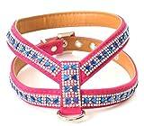 Pink und Blau Strass Samt Fliege Hundegeschirr mit Pailletten Strasssteine Detail Band für XSmall und kleine Rassen