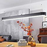 Wohnling LINE LED-Deckenleuchte, Metall, Schwarz, 120x121x15 cm