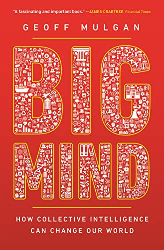 Big Mind - How Collective Intelligence Can Change Our World