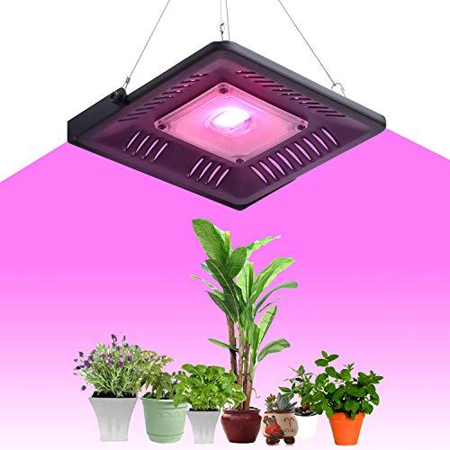 Pflanzenlampe LED 50W Vollspektrum Pflanzenleuchte Wachstumslampe LED Zimmerpflanzen für Innen Gewächshaus Hydroponik Gartenpflanzen Gemüse(mit Stahlseilhaken)