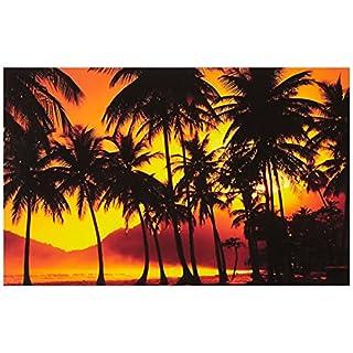 Asir Group LLC 4570DACT-36 Shining Dekorativ LED Beleuchtet Leinwand Malerei, bunt