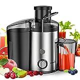 Entsafter für Gemüse und Obst Fruit Slow Juicer, Easehold Saftpresse, 65mm Einfüllöffnung Edelstahl BPA-Frei mit Rutschfesten Gummifüßen Saftbehälter mit 2 Geschwindigkeitsstufen (Maximum 800W)