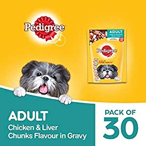 Pedigree Adult Wet Valentines Gift Dog Food, Chicken and Liver Chunks in Gravy, 30 Pouches (30x80g)