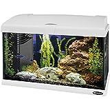 Ferplast 65015011W1 Aquarium Capri 50, Maße: 52 x 27 x 36 cm, 40 Liter, weiß