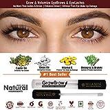GrowBrow - Eye Brows EyeLash Hair Growth & Volume Serum With Castor, Onion