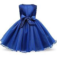 FXFAN Girl Rose Bow Vestido de fiesta de princesa Tulle Wedding Vestido de bautismo de dama de honor Girl Perfect Regalo de cumpleaños Beige, Azul, Rosa, Púrpura, Rojo, Blanco, Azul oscuro, RoseZHANGM