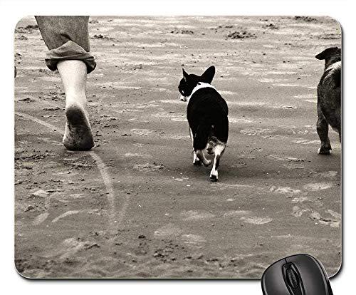 Gaming-Mauspads, Mauspad, Walking Beach Dogs Seashore Landscape - Drei Walking-socken