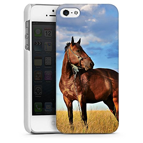 Apple iPhone 4 Housse Étui Protection Coque Cheval Jument Étalon CasDur blanc
