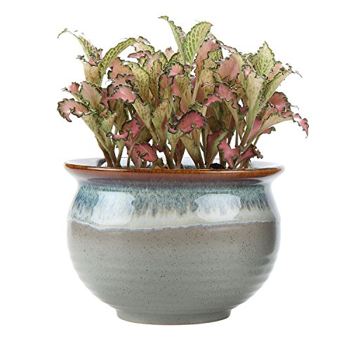 t4u-9cm-ceramic-flowering-glaze-sucuulent-plant-pot-cactus-plant-pot-flower-pot-container-planter-gr