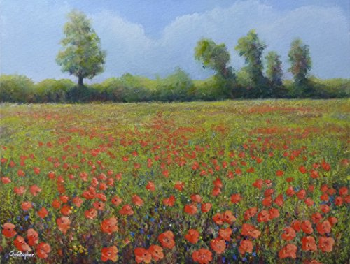 papaveri-di-un-prato-45cmx35cm-papavero-pittura-bel-paesaggio-con-fiori