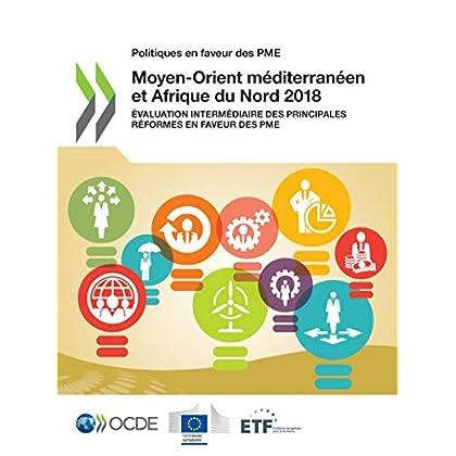 Politiques en faveur des PME : Moyen-Orient méditerranéen et Afrique du Nord 2018: Évaluation intermédiaire des principales réformes en faveur des PME (Développement)