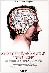 Bourgery, Atlas of Anatomy