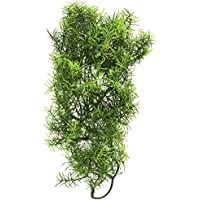 Zoo Med BU-28 Medium Cashuarina Kunststoffpflanze zur Dekoration im Terrarium