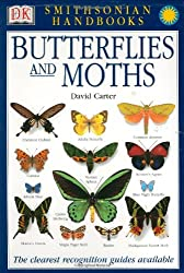 Butterflies and Moths (Smithsonian Handbooks (Paperback))