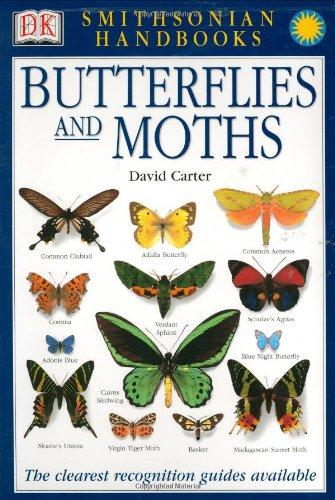 Butterflies and Moths (Smithsonian Handbooks (Paperback))