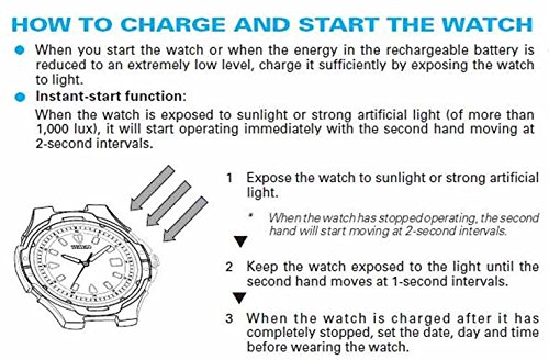 ab6a4dc94e3a Seiko Men s SNE039 Stainless Steel Solar Watch Buy Seiko Men s SNE039  Stainless Steel Solar Watch from